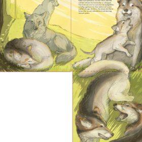 Wölfe Theresa Schwietzer Illustration Grafik